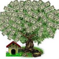 Bij de website Geld Aangeboden vindt u veel goede informatie!